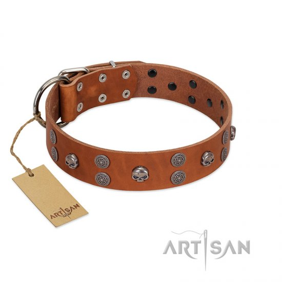 """Road Rider"" FDT Artisan Tan Leather Bullmastiff Collar with Old Silver-like Skulls and Medallions"