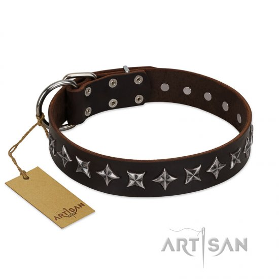 """Stars of Glory"" FDT Artisan Brown Leather Bullmastiff Collar for Comfortable Walking"