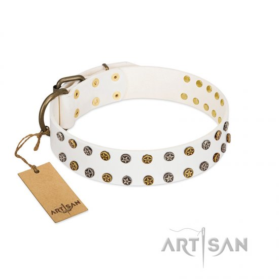 """Crystal Night"" FDT Artisan White Leather Bullmastiff Collar with Two Rows of Small Studs"