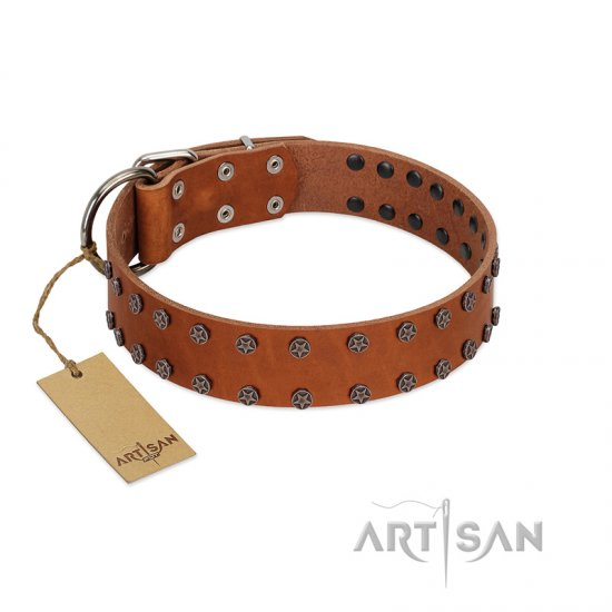 """Star Light"" Stylish FDT Artisan Tan Leather Bullmastiff Collar with Silver-Like Studs"
