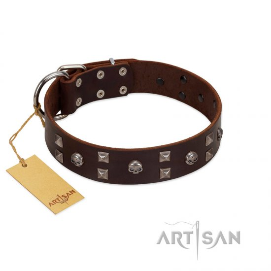 """Brown Shadow"" Designer Handmade FDT Artisan Brown Leather Bullmastiff Collar"