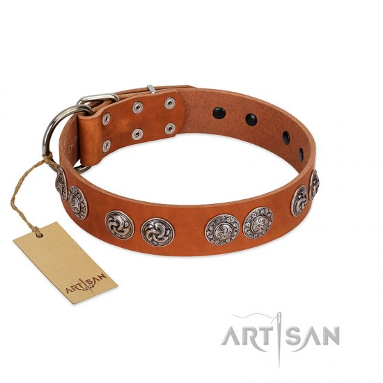 """Woofy Majesty"" FDT Artisan Tan Leather Bullmastiff Collar with Round Silver-like Plates"