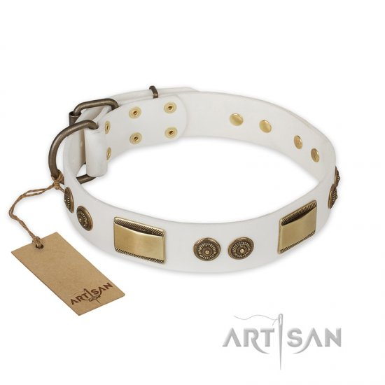 """Golden Avalanche"" FDT Artisan White Leather Bullmastiff Collar with Old Bronze Look Plates and Circles"