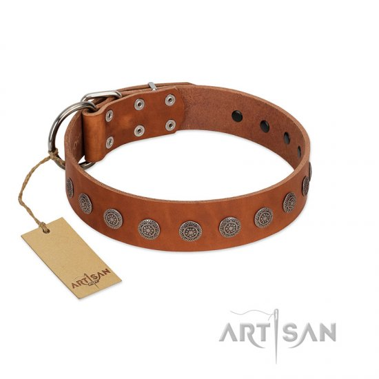 """Lucky Star"" Handmade FDT Artisan Designer Tan Leather Bullmastiff Collar with Round Plates"