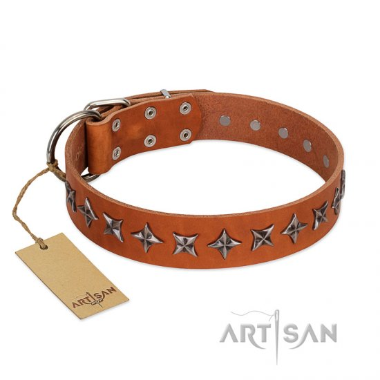 """Star Trek"" FDT Artisan Tan Leather Bullmastiff Collar Decorated with Stars"