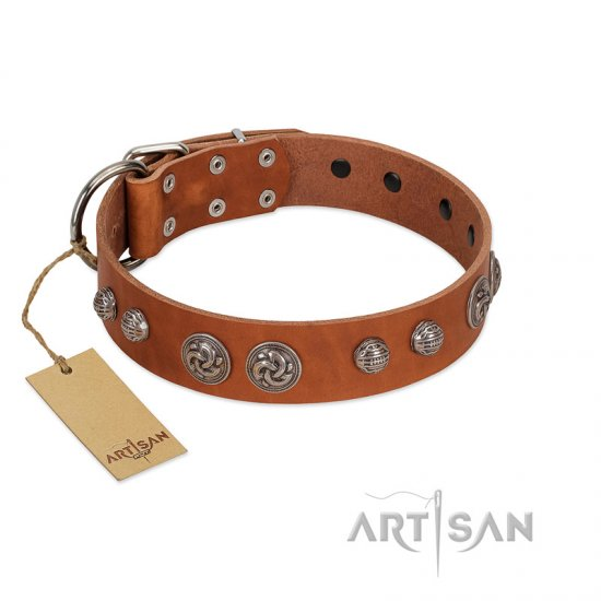 """Era Infinitum"" FDT Artisan Tan Leather Bullmastiff Collar Adorned with Chrome-plated Circles"