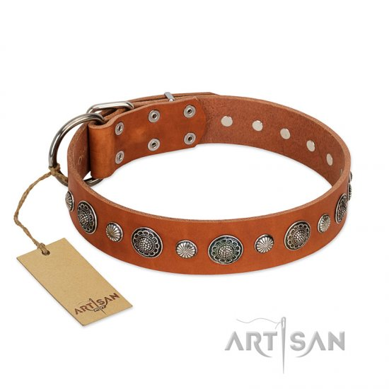 """Natural Beauty"" FDT Artisan Tan Leather Bullmastiff Collar with Shining Silver-like Studs"