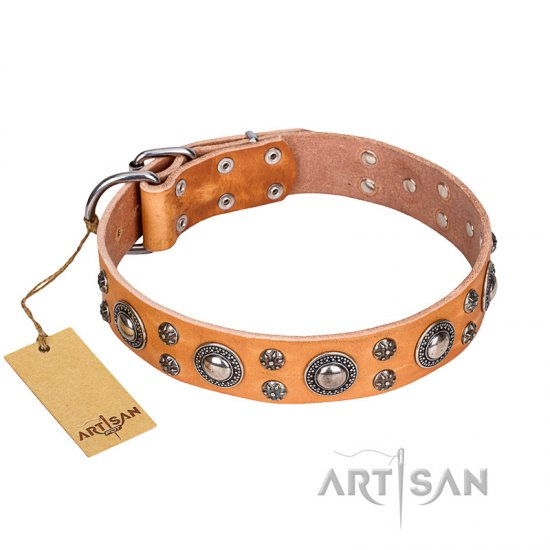 'Extra Sparkle' FDT Artisan Handcrafted Bullmastiff Tan Leather Dog Collar