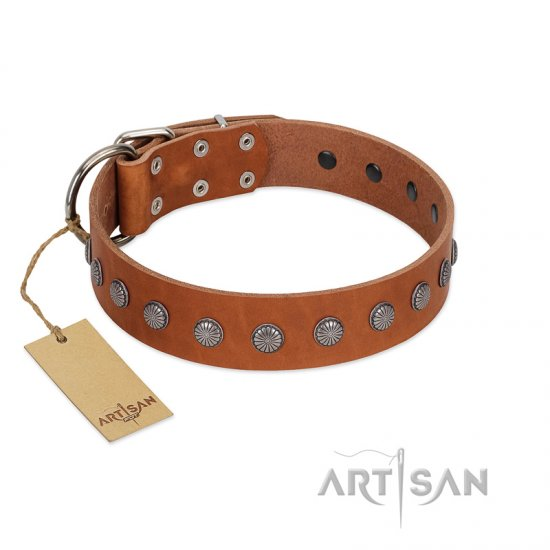 """Little Floret"" Fashionable FDT Artisan Tan Leather Bullmastiff Collar with Silver-Like Adornments"