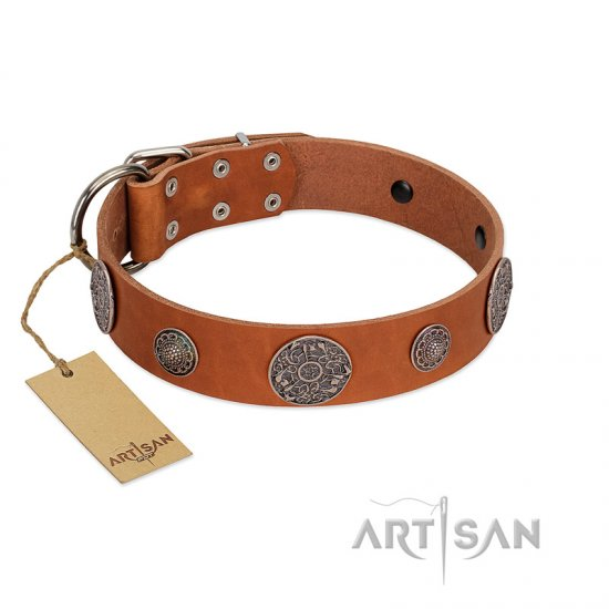 """Foxy Nature"" FDT Artisan Tan Leather Bullmastiff Collar with Chrome Plated Brooches"