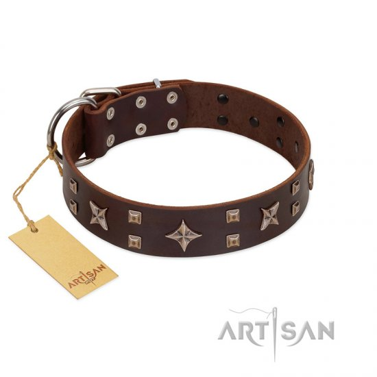 """Stars in Sands"" Modern FDT Artisan Brown Leather Bullmastiff Collar with Studs and Stars"