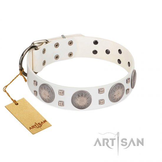 """Mighty Shields"" FDT Artisan White Leather Bullmastiff Collar with Chrome Plated Shields and Square Studs"