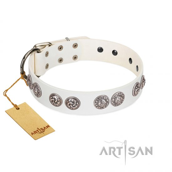"""Eye Candy"" Appealing FDT Artisan White Leather Bullmastiff Collar with Chrome Plated Medallions"