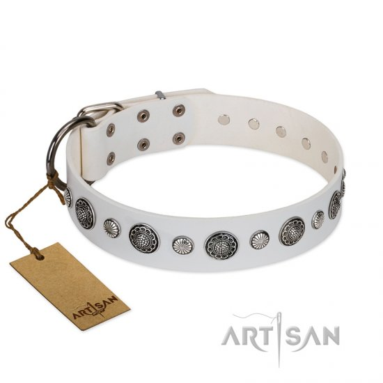 """Fluff-Stuff Beauty"" FDT Artisan White Leather Bullmastiff Collar with Silver-like Studs and Conchos"