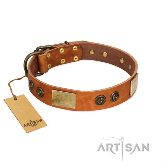 """Bronze Century"" FDT Artisan Tan Leather Bullmastiff Collar with Plates and Brooches with Cool Ornament"