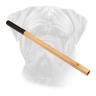 Bamboo Stick for Bullmastiff Training