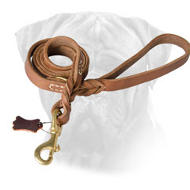 Exclusive Leather Leash for Bullmastiff with Braided Ends