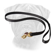Multi-Functional Nylon Bullmastiff Leash