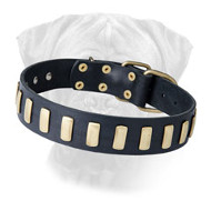Bullmastiff Leather Collar Decorated with Metal Plates
