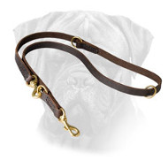 Leather Multifunctional Leash for Bullmastiff