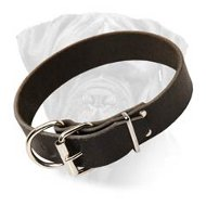 Bullmastiff Wide Leather Collar for Comfy Walking and Training