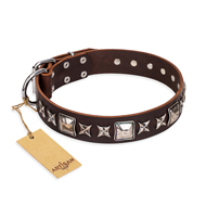 """Perfect Impression"" FDT Artisan Brown Leather Bullmastiff Collar with Square Studs - 1 1/2 inch (40 mm) Wide"