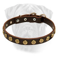 Bullmastiff Gorgeous Wide Leather Dog Collar With Dotted Circles