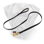 Nylon Bullmastiff Leash with Brass Plated Snap Hook for Walking and Training