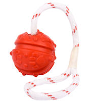 Similar to Everlasting Fun Ball on a Rope for Bullmastiff