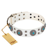 """Blue Sapphire"" Designer FDT Artisan White Leather Bullmastiff Collar with Round Plates and Square Studs"
