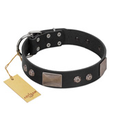 """Square Stars"" Modern FDT Artisan Black Leather Bullmastiff Collar with Square Plates and Studs"