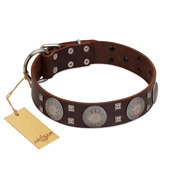 """Sun in Barchans"" Modern FDT Artisan Brown Leather Bullmastiff Collar with Engraved Stars on Round Plates and Studs"