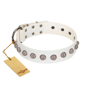 """Grandeur Dog"" FDT Artisan White Leather Bullmastiff Collar with Engraved Studs"