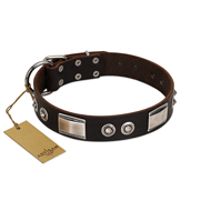 """Baller Status"" FDT Artisan Brown Leather Bullmastiff Collar Adorned with a Set of Chrome Plated Studs and Plates"