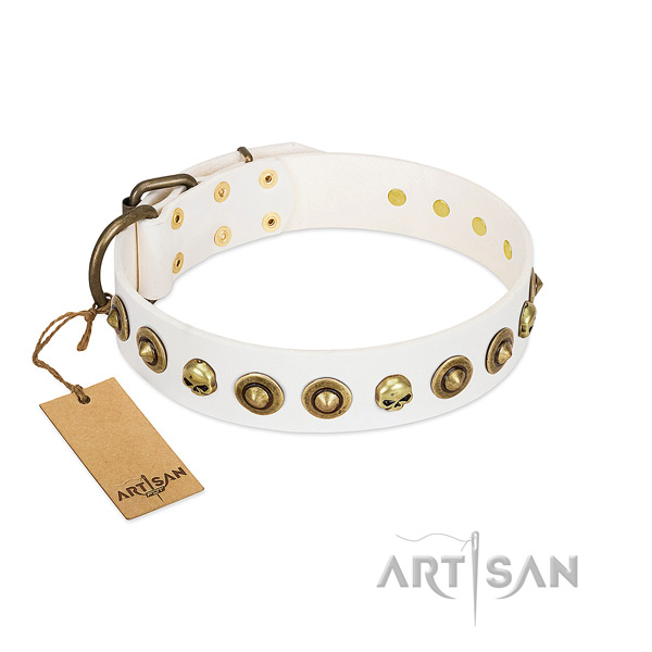 Full grain genuine leather collar with trendy adornments for your dog