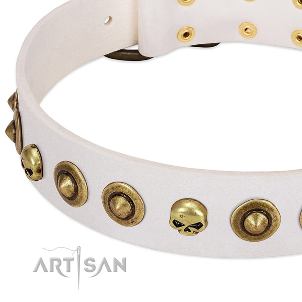 Extraordinary studs on full grain genuine leather collar for your doggie