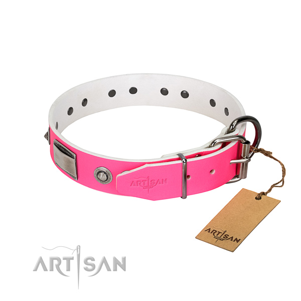 Stylish dog collar of genuine leather with adornments