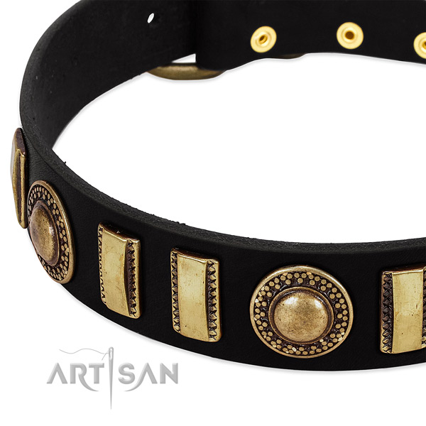 Strong genuine leather dog collar with durable traditional buckle
