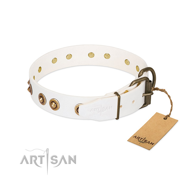Rust-proof hardware on full grain leather dog collar for your pet