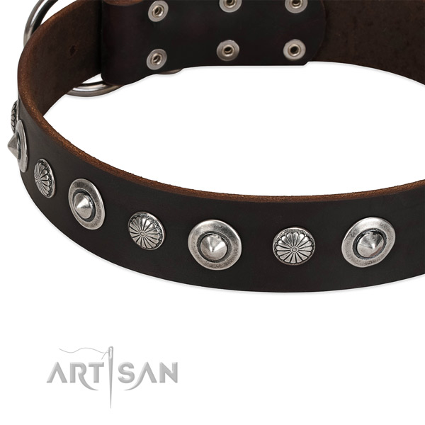 Fashionable adorned dog collar of quality full grain leather