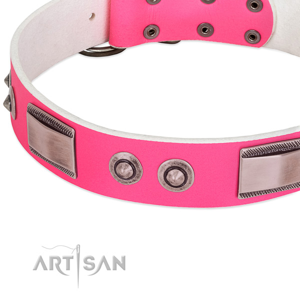 Significant full grain natural leather collar with adornments for your dog