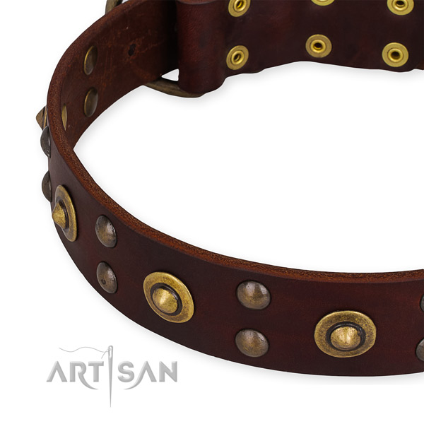 Genuine leather collar with corrosion proof fittings for your beautiful dog