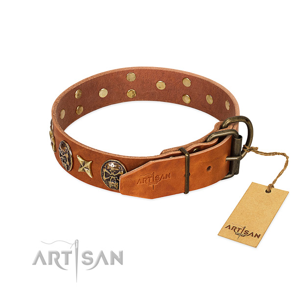 Leather dog collar with rust-proof fittings and embellishments