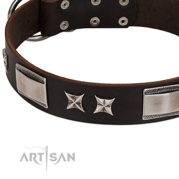Flexible full grain leather dog collar with strong buckle