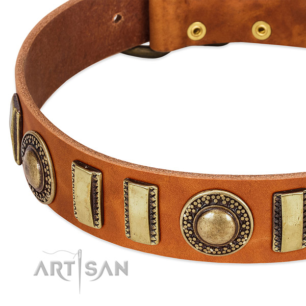 Reliable full grain genuine leather dog collar with reliable fittings