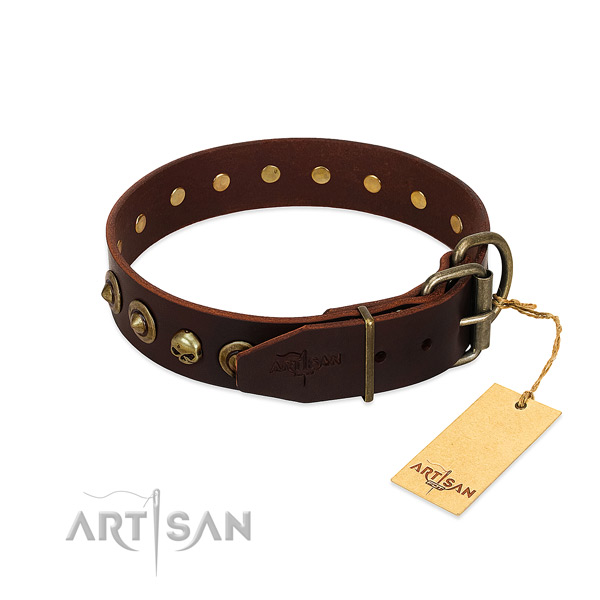 Natural leather collar with remarkable adornments for your dog