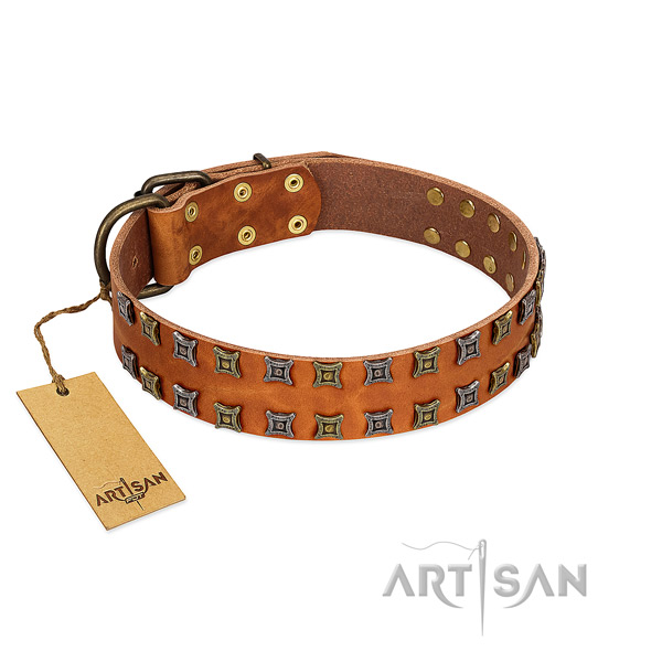 Top rate full grain genuine leather dog collar with embellishments for your pet