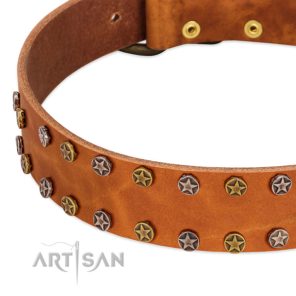 Walking full grain natural leather dog collar with designer adornments