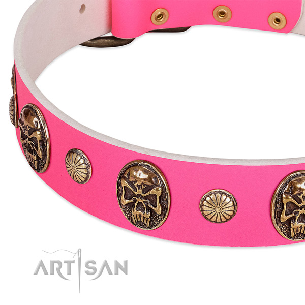 Corrosion proof decorations on full grain leather dog collar for your canine
