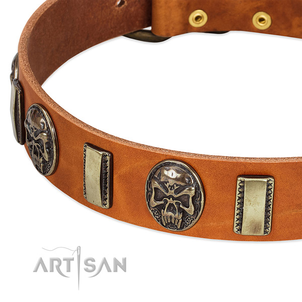 Durable decorations on full grain natural leather dog collar for your pet